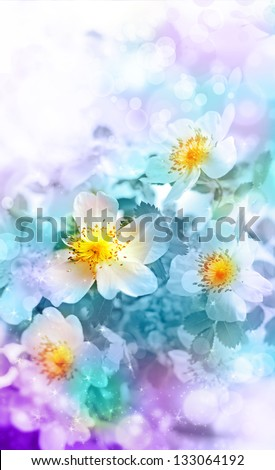 Beautiful spring background with  flowers and blur/ Spring blue flowers/ Floral background - stock photo