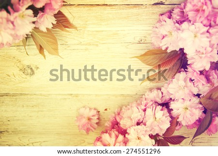 Beautiful spring blossom on wooden background. - stock photo