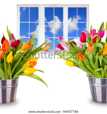 Beautiful spring bouquets of tulips with window - stock photo