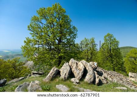 Beautiful spring day in Dobrogea hills, Romania - stock photo