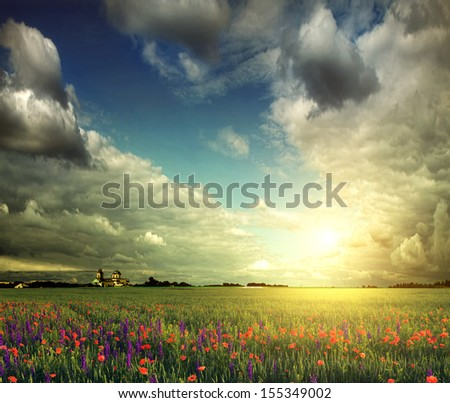 Beautiful spring field with poppies and lavender - stock photo