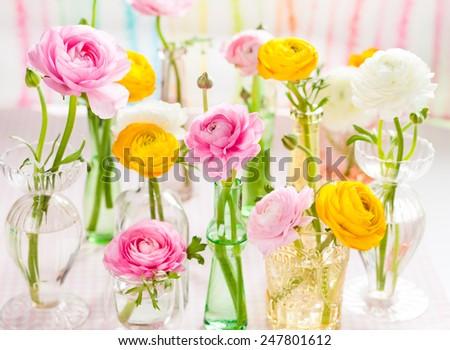 Beautiful spring flowers in vase - stock photo