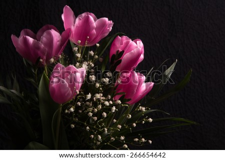 Beautiful spring flowers on a dark  background
