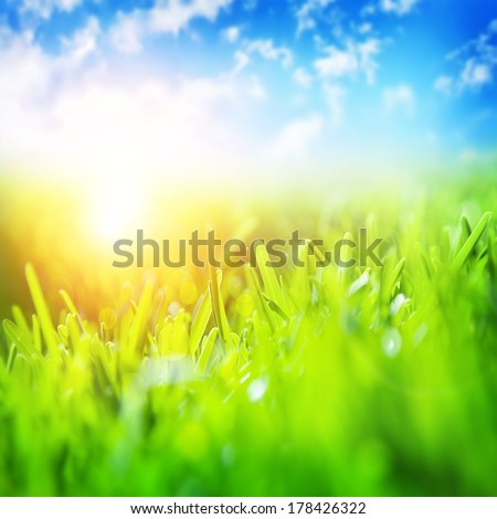 Beautiful spring landscape, fresh green grass, blue sky, bright yellow sun light, gorgeous warm weather, springtime season concept - stock photo