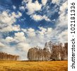 Beautiful spring landscape with birch forest - stock photo