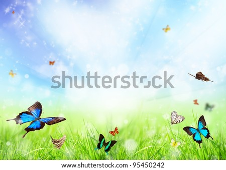 Beautiful spring meadow with butterflies - stock photo