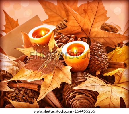 Beautiful still life for Thanksgiving day holiday, abstract natural background, greeting card, dry leaves, fir cones, two candles, happy celebration concept - stock photo