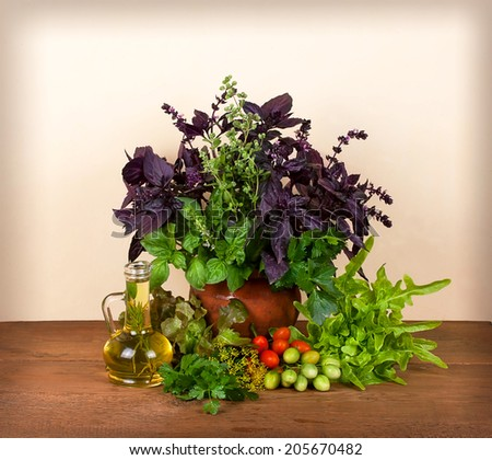Beautiful still life with basil, celery, dill, marjoram, parsley, lettuce and tomatoes cherry on wooden background - stock photo