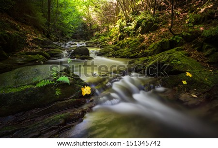 Beautiful stream flowing between rocks covered with moss in a mysterious dark forest - stock photo