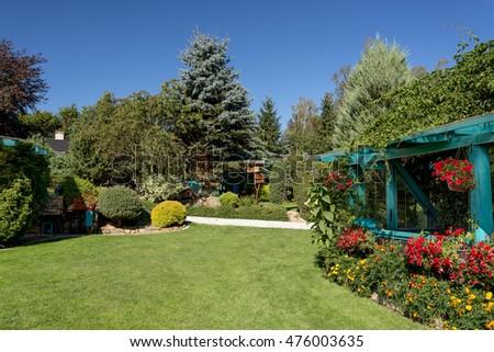 beautiful summer garden design with conifer trees green grass and morning sun cut - Garden Design Trees
