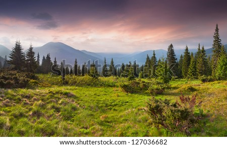 Beautiful summer landscape in the mountains. Sunrise - stock photo