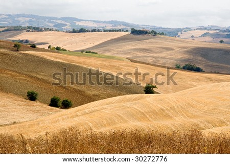 Beautiful summer landscape in Tuscany