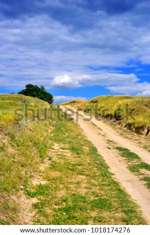 Beautiful summer landscape of mountainous terrain, flowering grass, blue sky, trees and hills. Wild nature, rural road