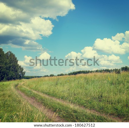 beautiful summer landscape with a country-road