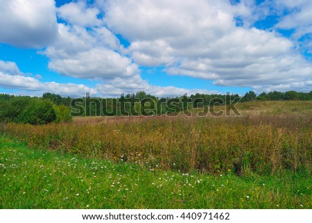 Beautiful summer landscape with grass, trees, sky and clouds - stock photo