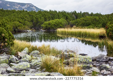 Beautiful summer landscape with lake in Parang mountains,Romania  - stock photo