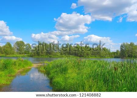 stock-photo-beautiful-summer-landscape-w