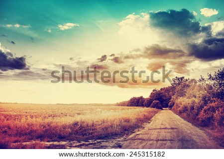 beautiful summer landscape with road in sunset - stock photo