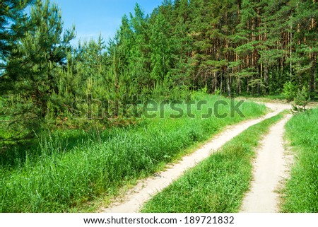 beautiful summer rural landscape with the forest and the road - stock photo