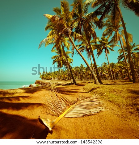 Beautiful sunny day at tropical beach with palm trees. Ocean landscape in vintage style. India - stock photo