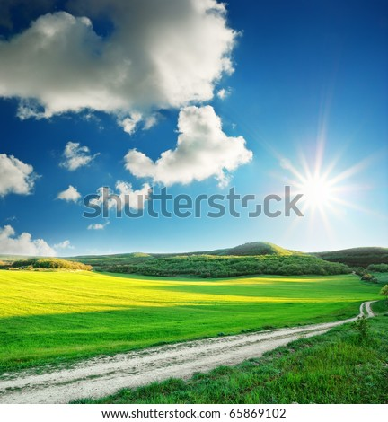 Beautiful sunny landscape. Composition of nature.