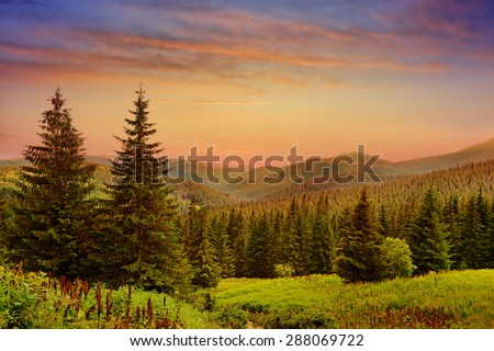 Beautiful sunrise in the mountains - stock photo