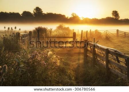 Beautiful sunrise landscape over foggy English countryside with glowing sun - stock photo