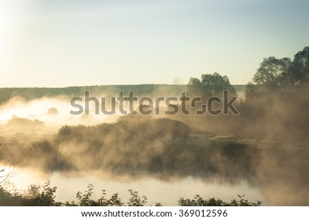 Beautiful sunrise on river bank in early misty morning with rising fog between trees and clear blue sky - stock photo