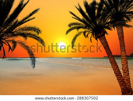 Beautiful sunset above the sea  - stock photo