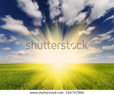 Beautiful sunset and green field - stock photo