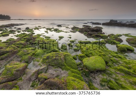 Beautiful sunset at unspoilt Borneo beach at low tide exposing the mossy green rocks on the reef shelf. Sabah, Malaysia Focus to foreground - stock photo