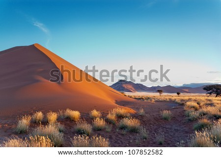 Beautiful sunset dunes and nature of Namib desert, Sossusvlei, Namibia, South Africa - stock photo