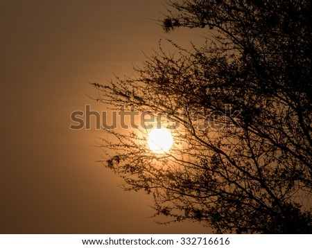 beautiful sunset in Africa  - stock photo