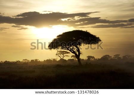 Beautiful sunset in Amboseli National Park 05 - stock photo
