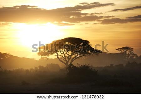 Beautiful sunset in Amboseli National Park 11 - stock photo
