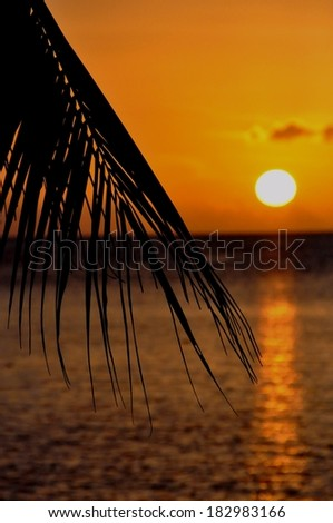 beautiful sunset in french polynesia - stock photo