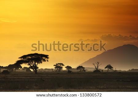 Beautiful sunset in Kenya 01 - stock photo