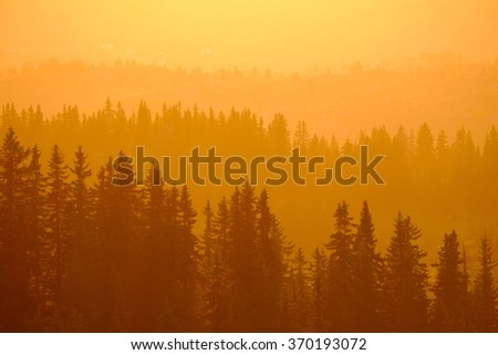 Beautiful sunset in mountains with silhouette lines of fir-trees. Summer sundown. Wonderful nature background. - stock photo
