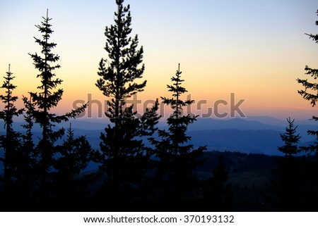 Beautiful sunset in mountains with silhouette of branches of fir-trees. Summer sundown. Wonderful nature background. - stock photo