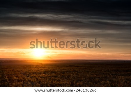beautiful sunset in the field. spring landscape - stock photo