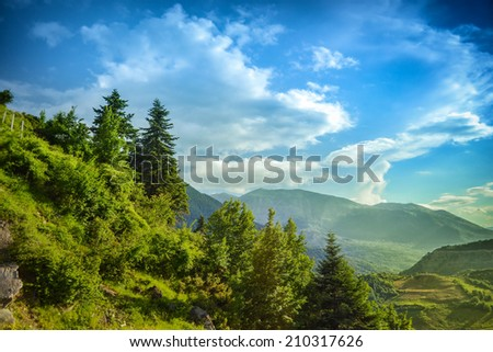 Beautiful sunset in the mountains landscape with pine trees and cloudy sky.