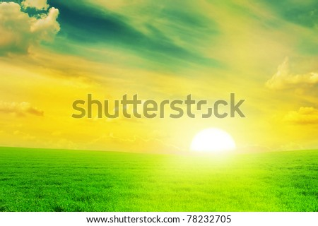 Beautiful sunset on a spring field. - stock photo