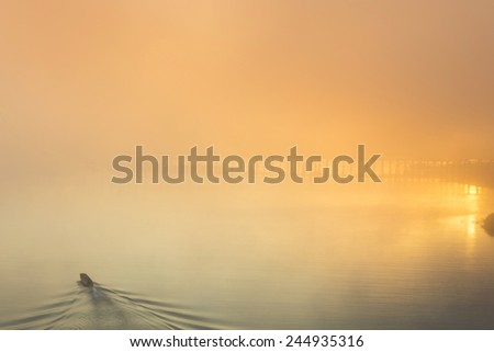 Beautiful sunset on the river. Fisherman is in the boat - stock photo