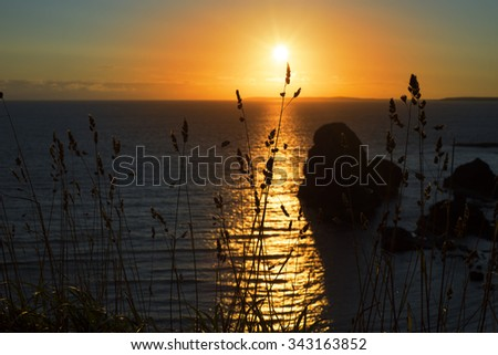 beautiful sunset over the virgin rock with wild tall grass on the wild atlantic way - stock photo