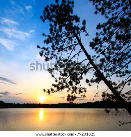 Beautiful sunset seen through pine trees over a northwoods Wisconsin lake - stock photo