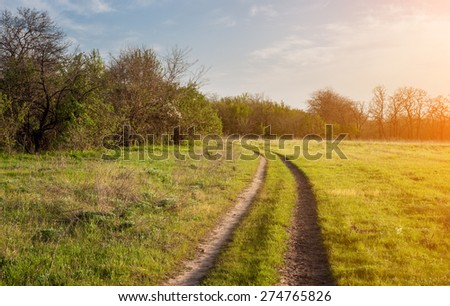 Beautiful sunset. Spring landscape with road in field in Ukraine