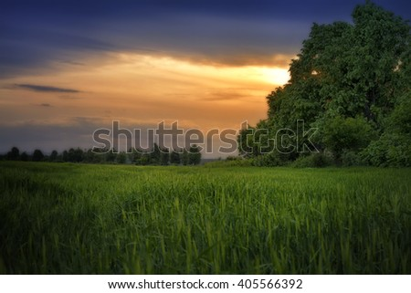 Beautiful sunset. Spring landscape with trail, trees, blue sky and clouds in Bulgaria  - stock photo
