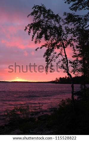 Beautiful sunset with birch silhouette on Karelia Engozero lake, Northern Russia