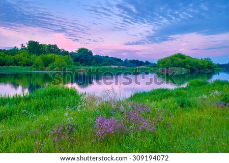 Beautiful sunshine countryside river flowers sky clouds landscape meadow Poland - stock photo