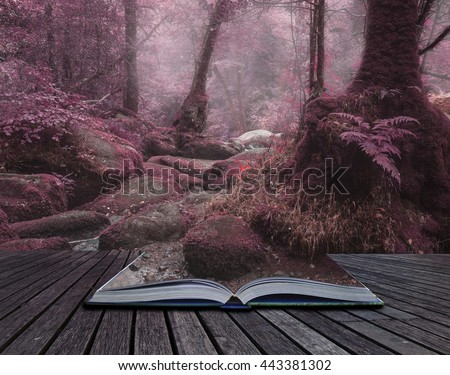 Beautiful surreal alternate color forest landscape image - stock photo